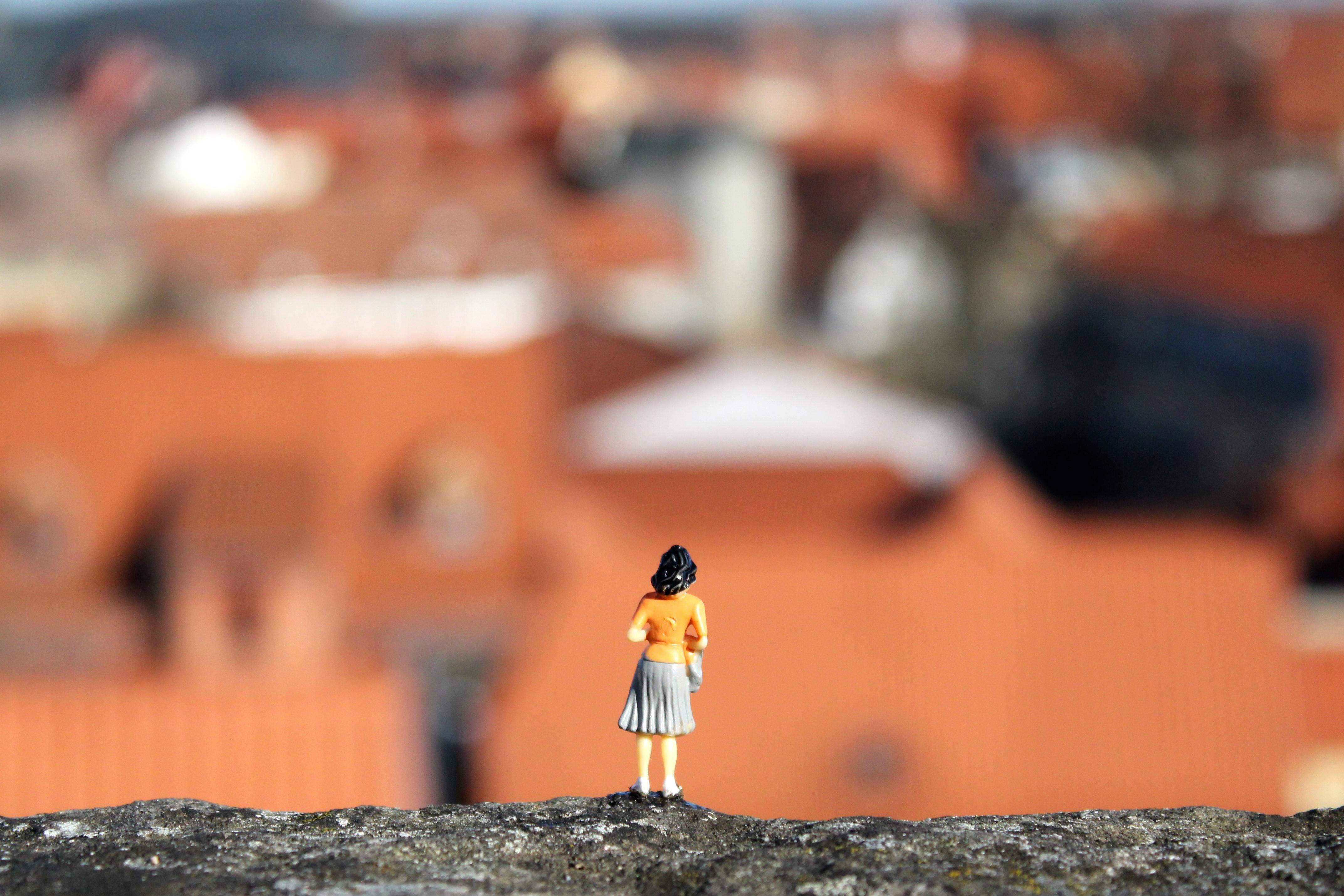 Schlossmauer-Totale