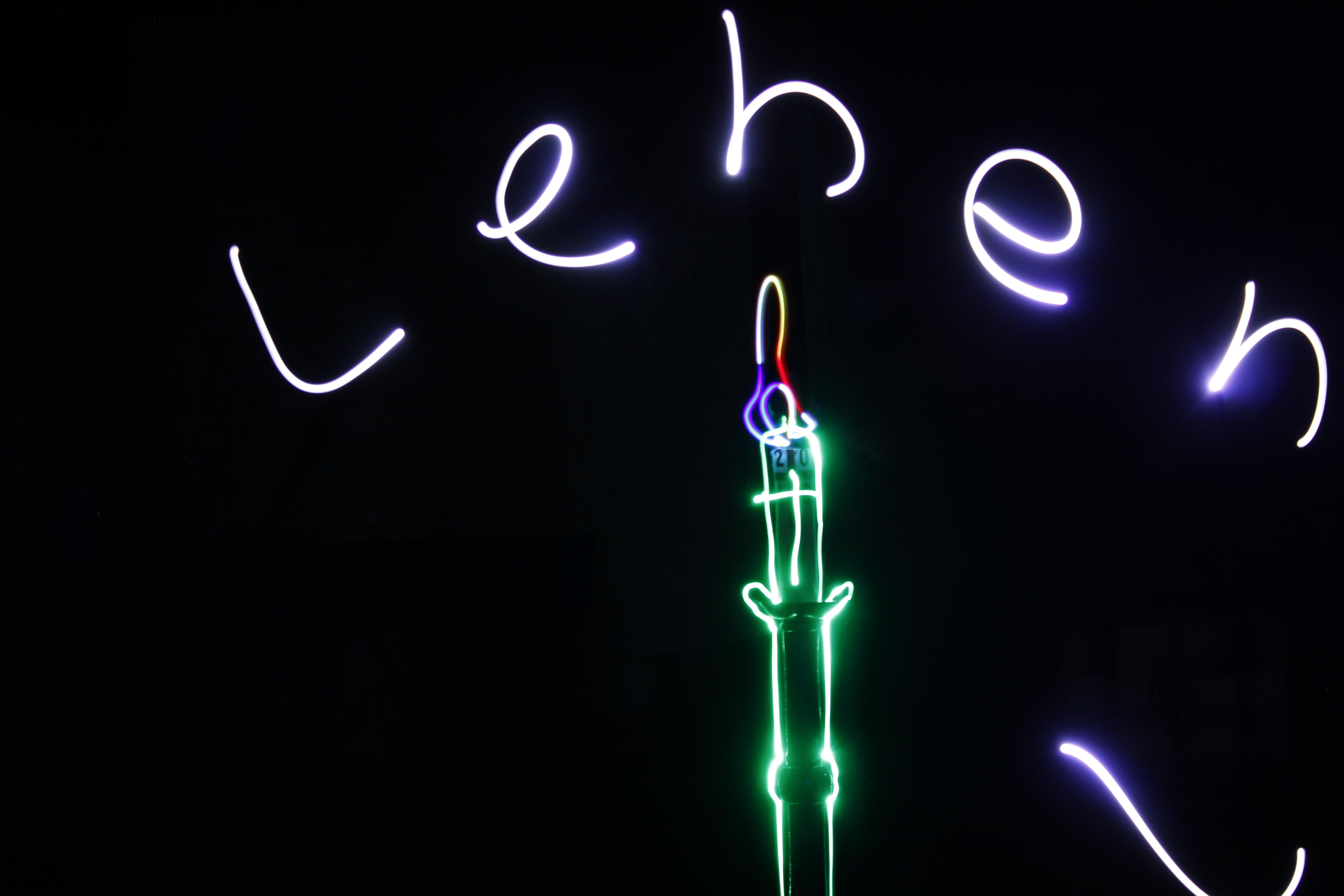 Licht ist Leben