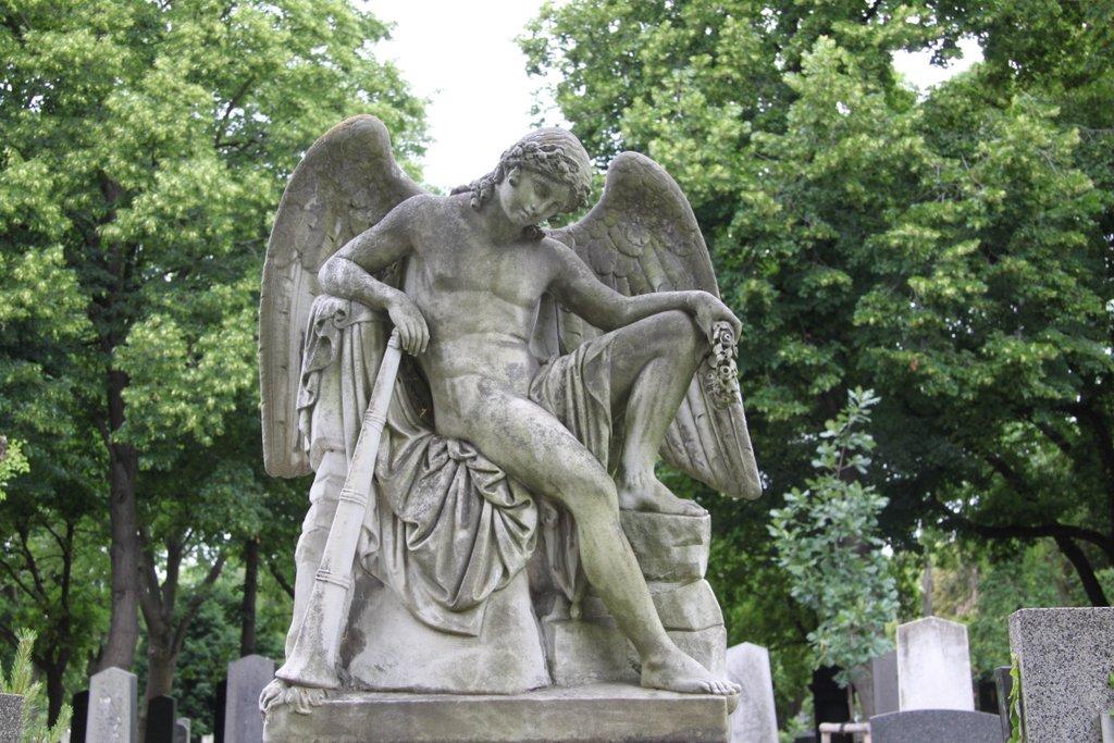 Engel – Wien