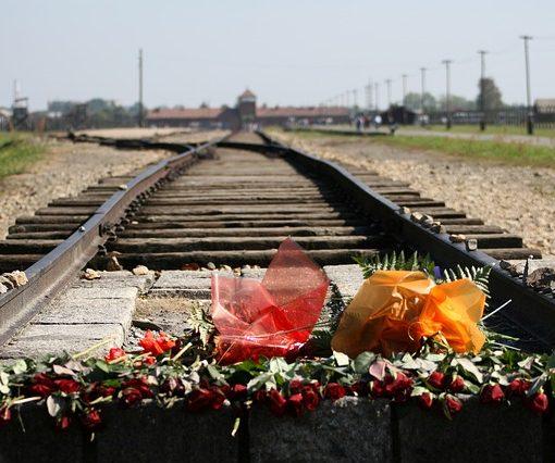 Schienen nach Auschwitz