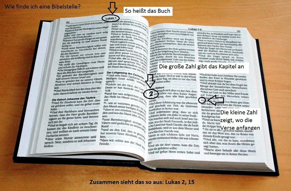Katholische Bibel Online